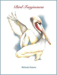 bird-forgiveness-book-by-author-Melinda-Palacio